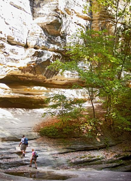 Starved Rock State Park Campground: This campground isn't actually inside the outstanding state park, a surprise to some campers we met, but it's still a gem to us. Details: www.midwestliving...