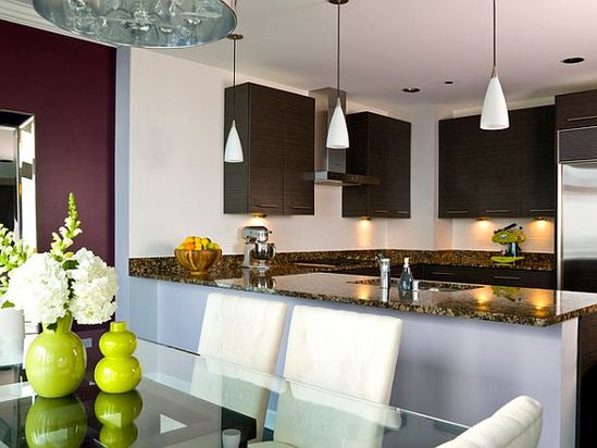 Chicago apartment renovation – modern kitchen design