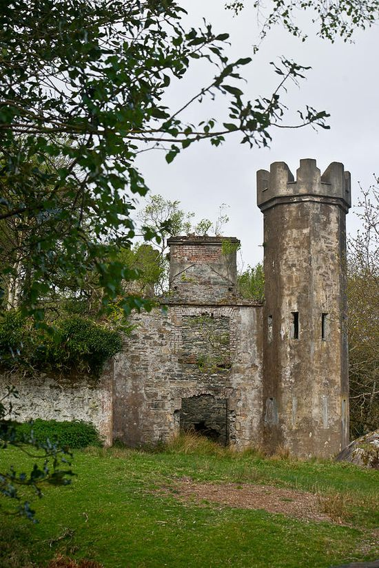 Abandoned Castle In The Middle of Forest