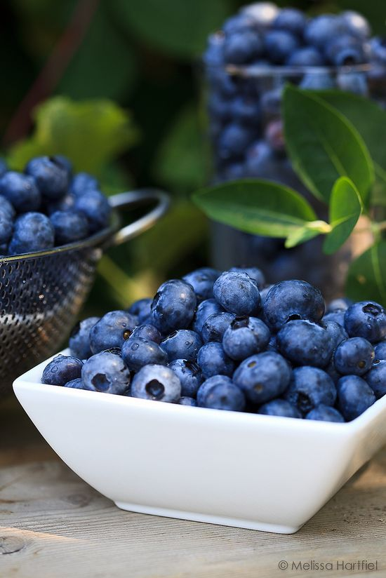 Fresh delicious blueberries.