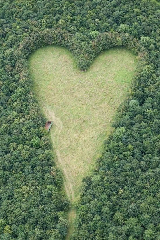 milktree:  A heart-shaped meadow, created by a farmer as a tribute to his late wife, can be seen from the air near Wickwar, South Gloucestershire. The point of the heart points towards Wotton Hill, where his wife was born.