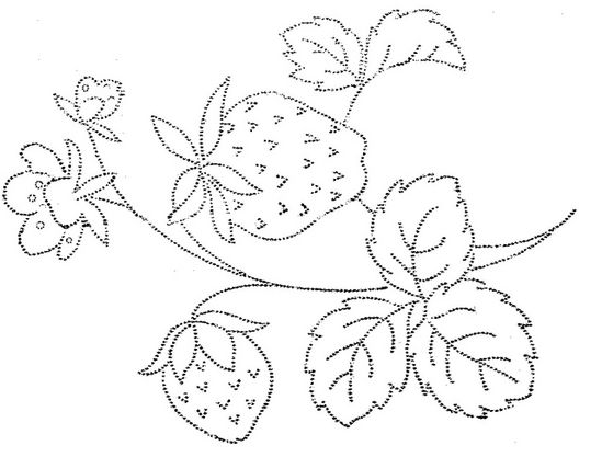 strawberry embroidery