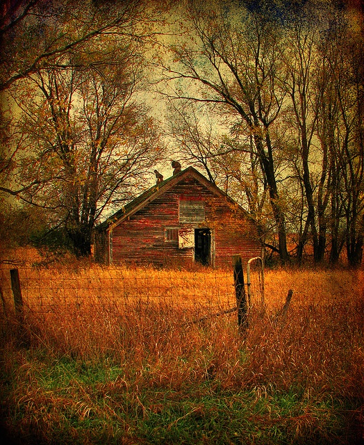 Autumn in Rural Iowa by McMorr, via Flickr