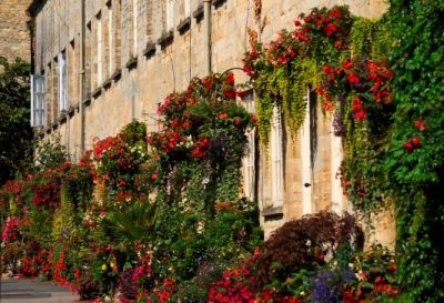 Cotswolds > Travel Guide > Cirencester