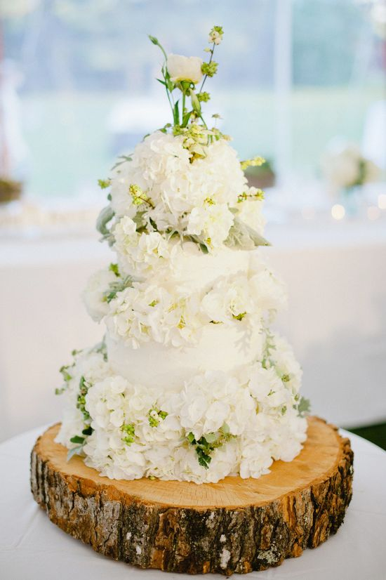 Beautiful cake with amazing white flowers.