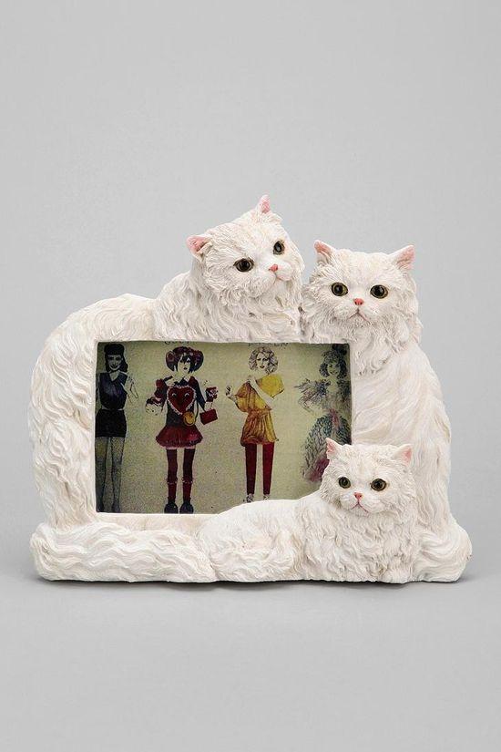 Persian Cat Frame #urbanoutfitters
