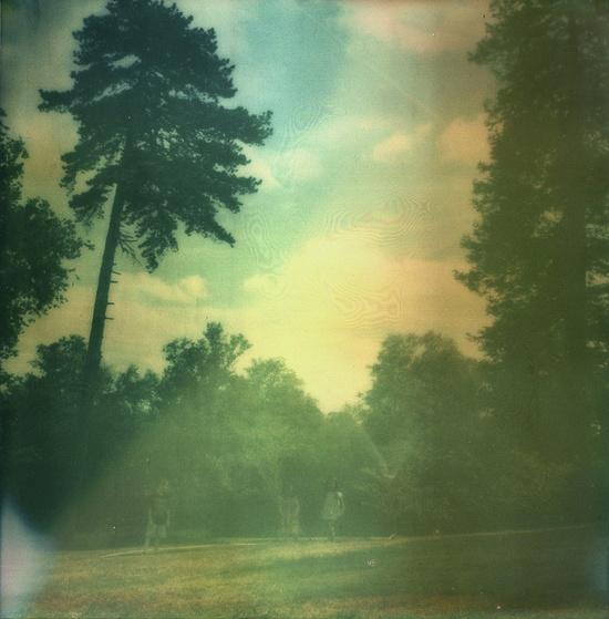 sx-70 polaroid • jl pictures