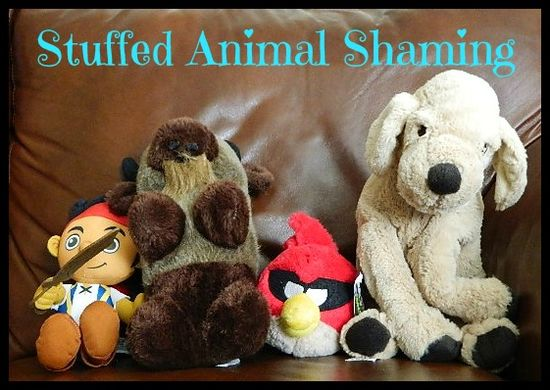 Stuffed Animal Shaming