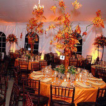 קשטו את גן האירועים בצבעי העונה ובאלמנטים מהטבע