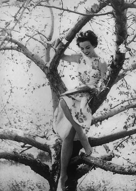 She'll go to great heights in the name of fashion! :) #vintage #1950s #model #dress #fashion #spring #tree