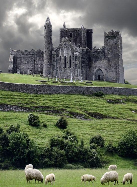 Medieval Castle, Cashel, Ireland photo via annette