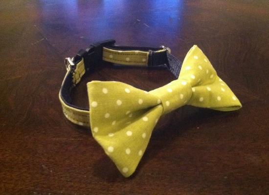 Handmade bow tie collar
