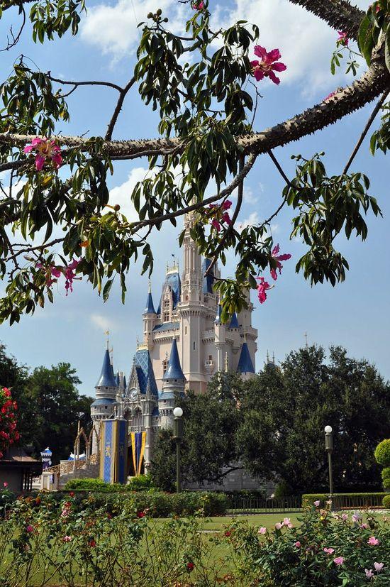 Cinderella Castle at #Disney