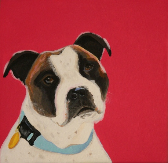 Pet Portraits by Lesli DeVito, now this is a great gift idea for the pet lover in your life! (Charlie the boxer)
