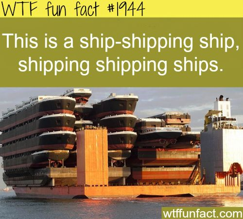 Ship-shipping ship, shipping shipping ships  - WTF fun facts