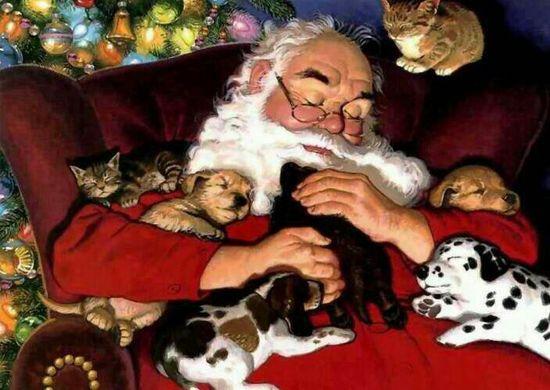 Santa and baby animals ?