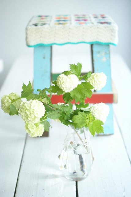viburnum from the garden by wood & wool stool.