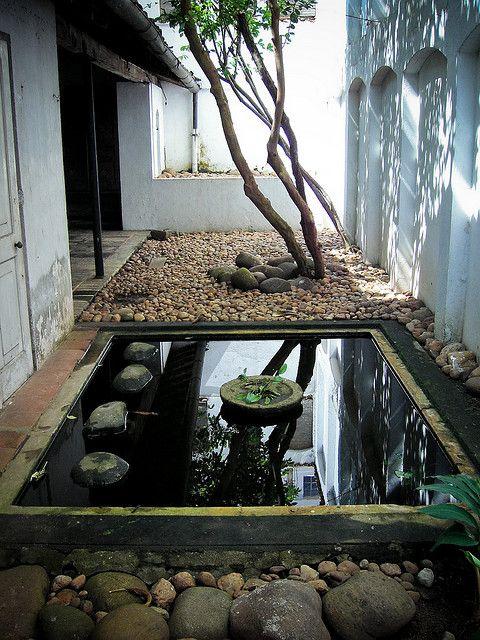 patio et bassin