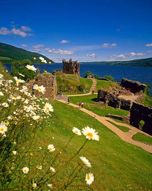 Daisy trying to steal the view at Urquhart Castle on Loch Ness, Scotland