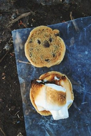 chocolate chip cookie s'mores... yum.