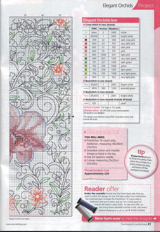 modèle orchidée rose