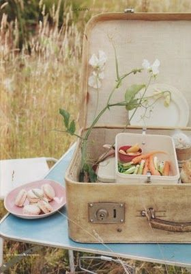 Picnic in a suitcase