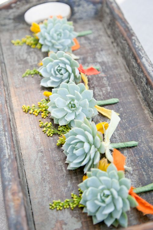 Succulent boutonnieres with colored fabric