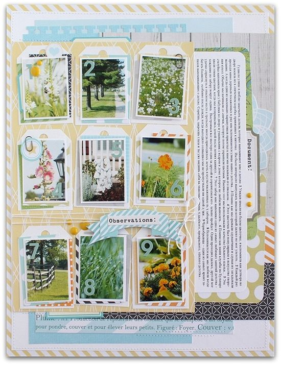 "#papercraft #scrapbook #layout.   ""Observations"""