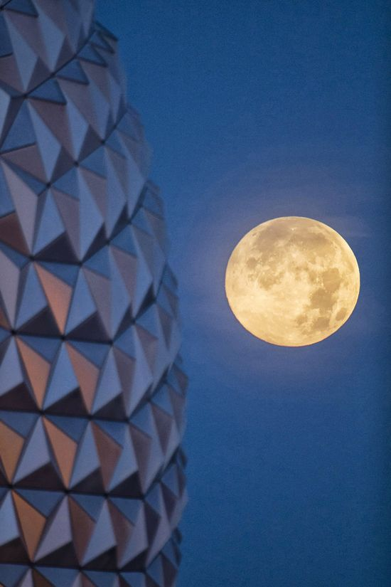 Walt Disney World Resort, Florida. 8 Super Photos of the Supermoon 6/23/13 via Buzzfeed
