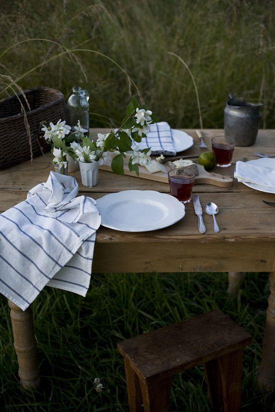 lovely picnic