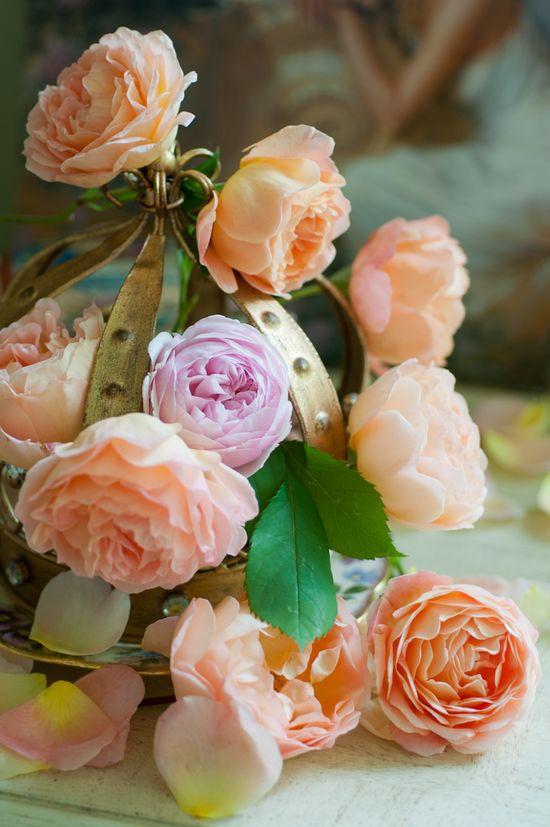 David Austin roses in a pretty vintage crown