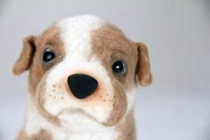 They turn a picture of your dog into a stuffed animal for you!!