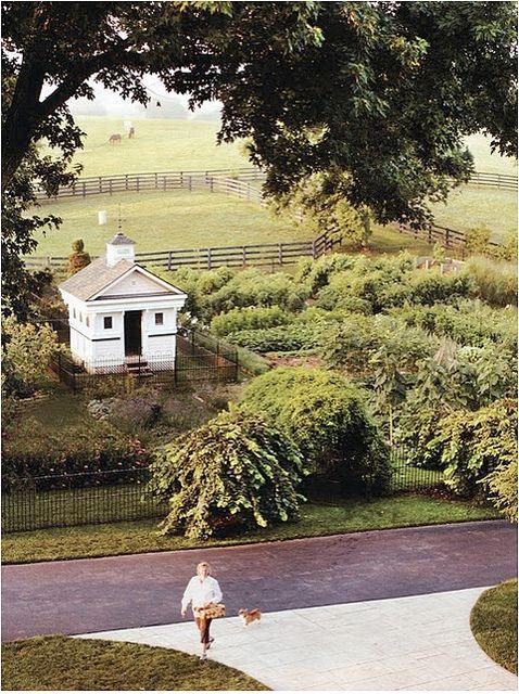 potager garden - I love the design of the little building in the garden.
