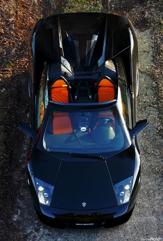 Aerial View of this Sick Lamborghini  #car #cars #auto #autos #luxury #fastcars #fastlane #luxe #living #exotic #exoticcars #dream #dreamcars #lamborghini #aventador #aerial #view #sick #vroom #sport #cool #awesome #hot #sexy #great #style  www.gmichaelsalon...