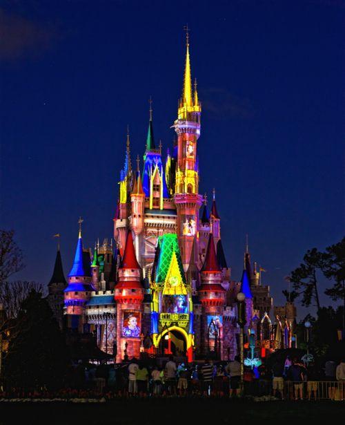 Disney Magic Kingdom Castle
