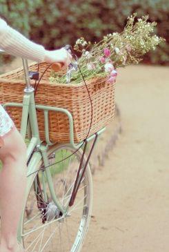 Summertime bike! ?
