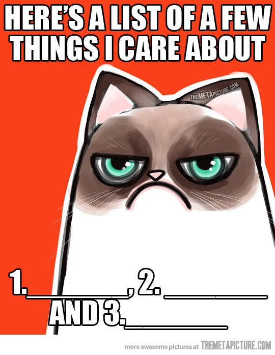 A list of things I care about…-Grumpy Cat