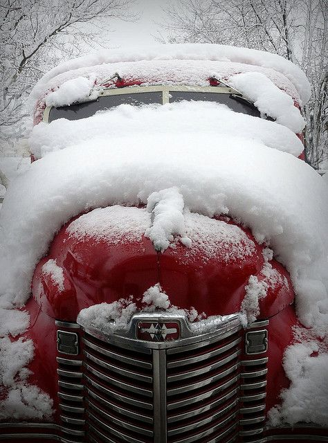 Red, red in a blanket of white!