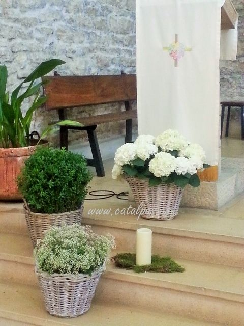 catalpas - iglesia d
