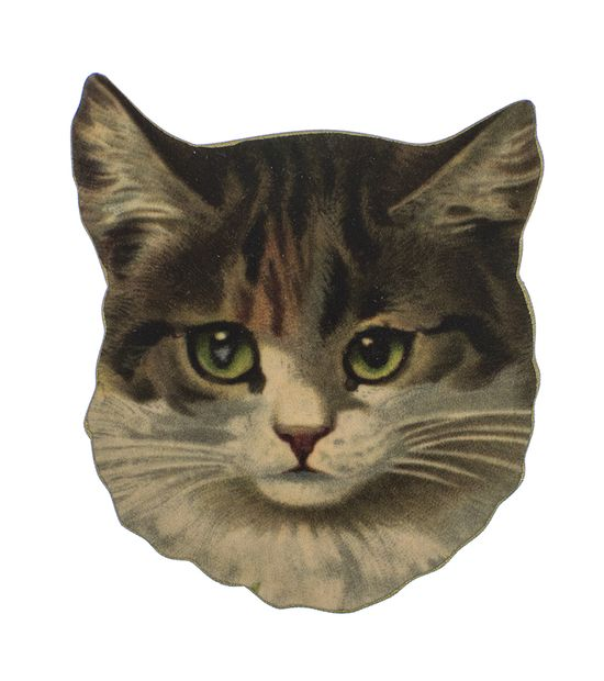 Add the purr-fect touch to your outfit with this Mama's Babies Cat Brooch!