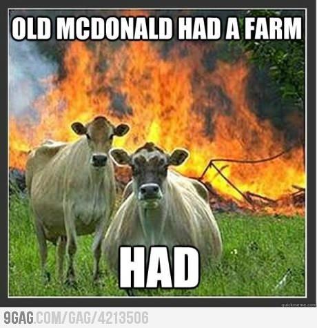 Hahaha, scary cows!
