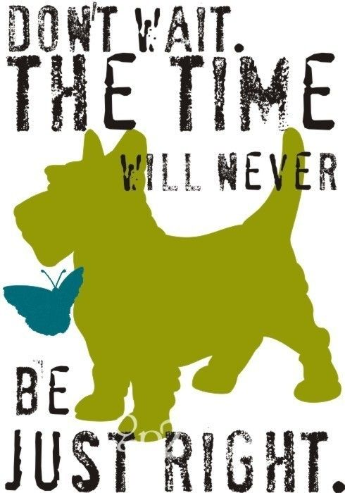 TRUTH:  life is so much merrier with our scottish terriers--