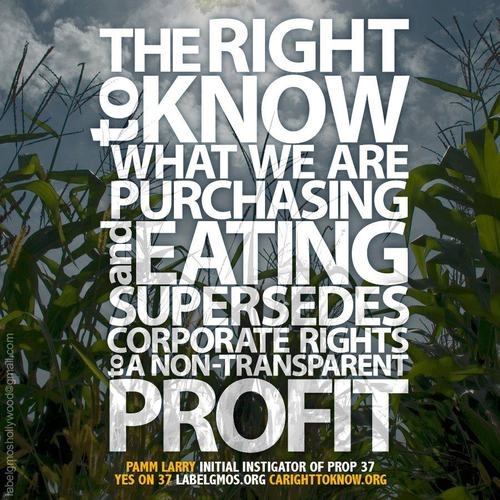 Prop 37.  Government + Food Industry = $$ + Corruption. #LabelGMOs