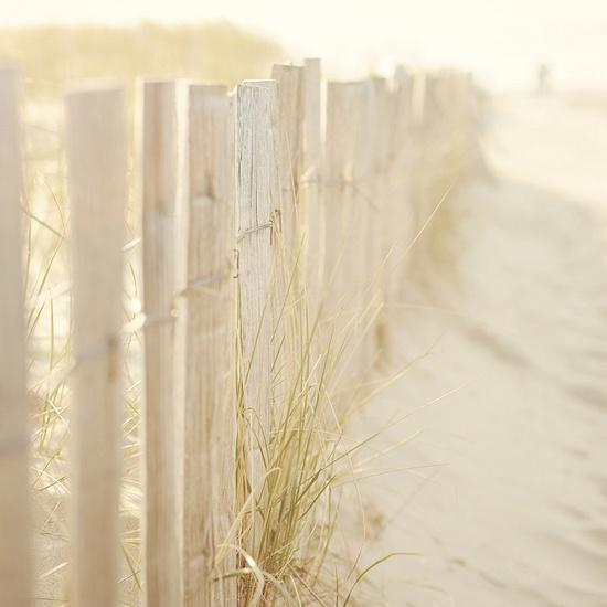 Take me here, now.