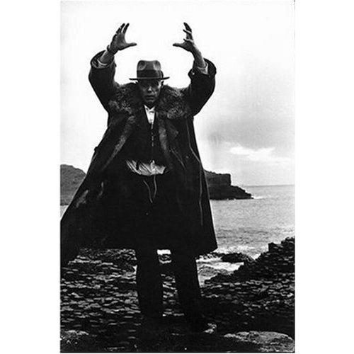 Joseph Beuys pimpin the fur (S O Z I A L E P L A S T I K)