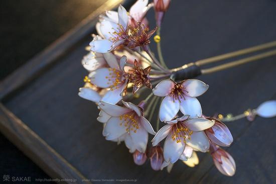 Photo by OSAMU YAMAZAKI ( pinterest.com/... )( imagedive.co.jp/ )??    ???  ???? 2013??? ???? -Cherry Blossom- ? Japanese hair accessory -  Cherry Blossom Kanzashi - by Sakae, Japan???  www.facebook.com/...