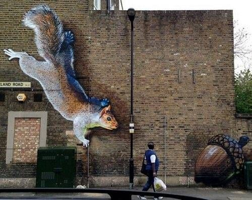 squirrel street art #graffiti