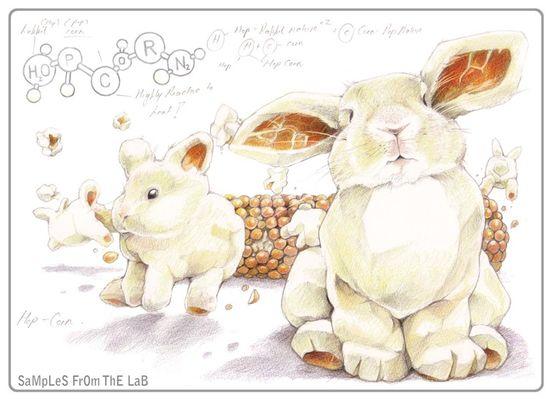 Deux lapins s'aimaient d'amour tendre
