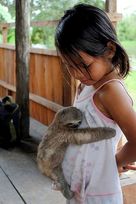 Baby sloth!! So jealous this little girl gets to be hugged by this cutie ?