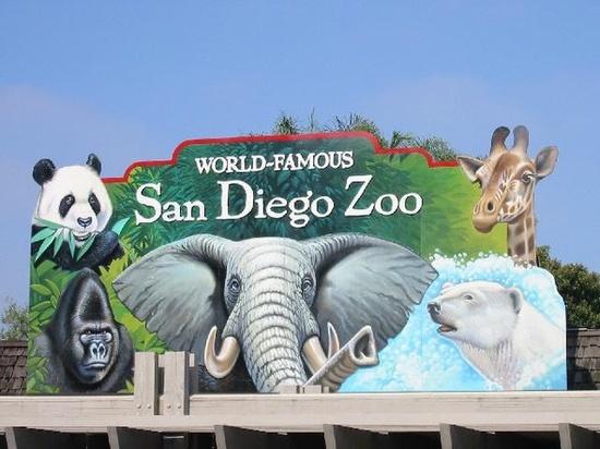 San Diego Zoo, San Diego CA